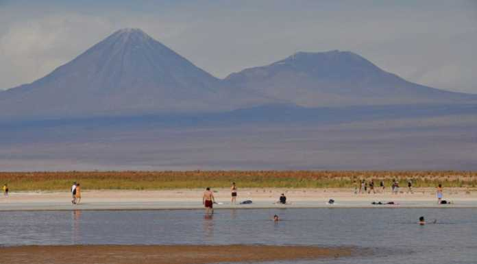 Lagunas Cejar Atacama
