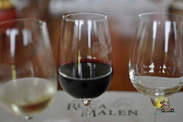 Visita e almoço a Cavas Wine Lodge em Mendoza - Argentina