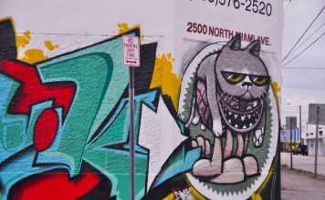 Graffiti e o Wynwood Arts District Miami