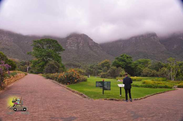 Kirstenbosch Gardens – Cape Town