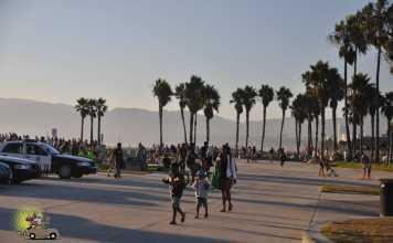 Venice Beach Los Angeles-10