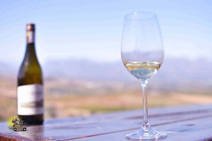 África do Sul e vinhos: muito além do safári