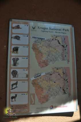 Safári na África do Sul: Kruger Park e os Big 5, Safári na África do Sul: Kruger Park e os Big 5, Viagem pelo Mundo blog, Viagem pelo Mundo blog