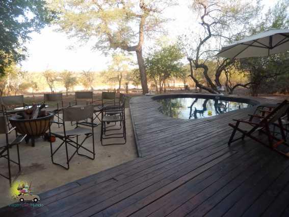 Safári na África do Sul: Kruger Park e os Big 5