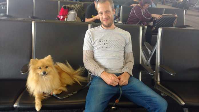 Viagem com cachorro para os EUA (na cabine), Viagem pelo Mundo blog