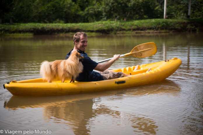 Parque Aventurah Brotas cachorro