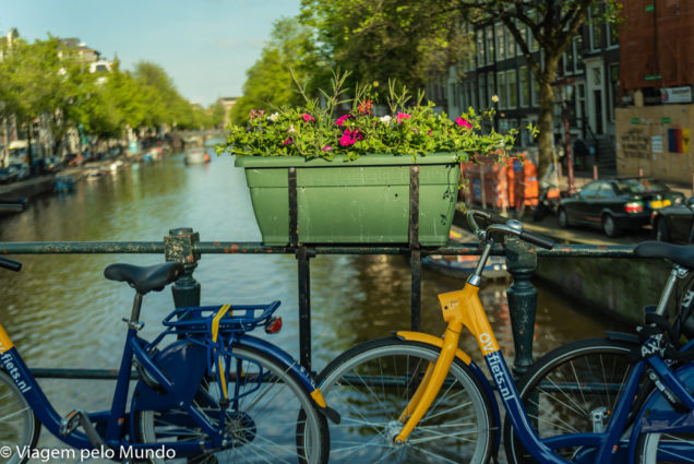 Como se locomover em Amsterdã (com pet)